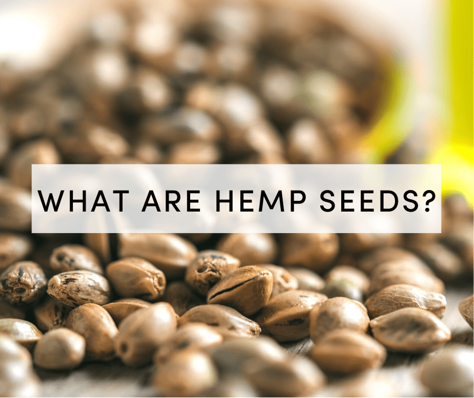 what are hemp seeds